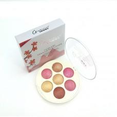Glamorous Face Terracotta Highlighter Blush On Palette 7 Different Colors
